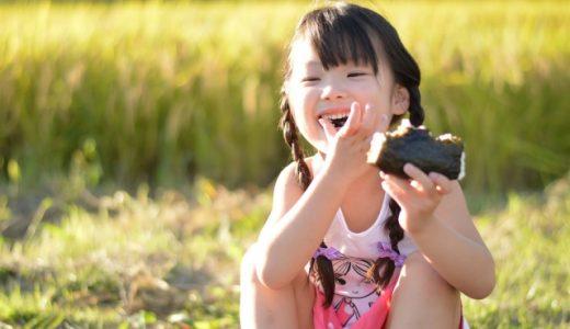 ふるさと納税 美味しい米ランキング トップ10【2019年版】
