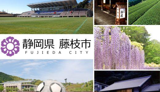 【ふるさと納税】静岡県藤枝市のおすすめ返礼品と主要10サイトの一覧まとめ
